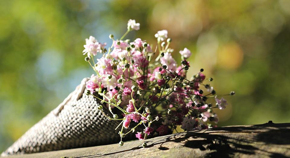 flores-pixabay